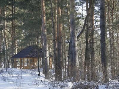 Территория базы отдыха зимой