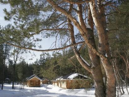 Территория зимой