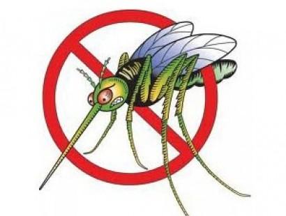Лето без комаров!
